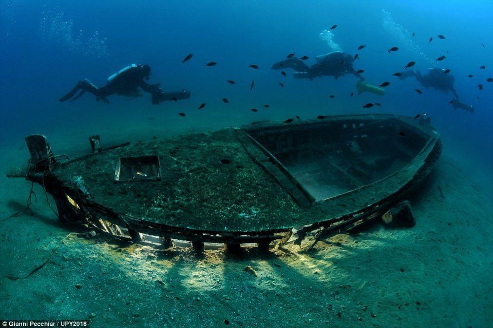 الصور الفائزة بمسابقة التصوير تحت الماء لعام 2018