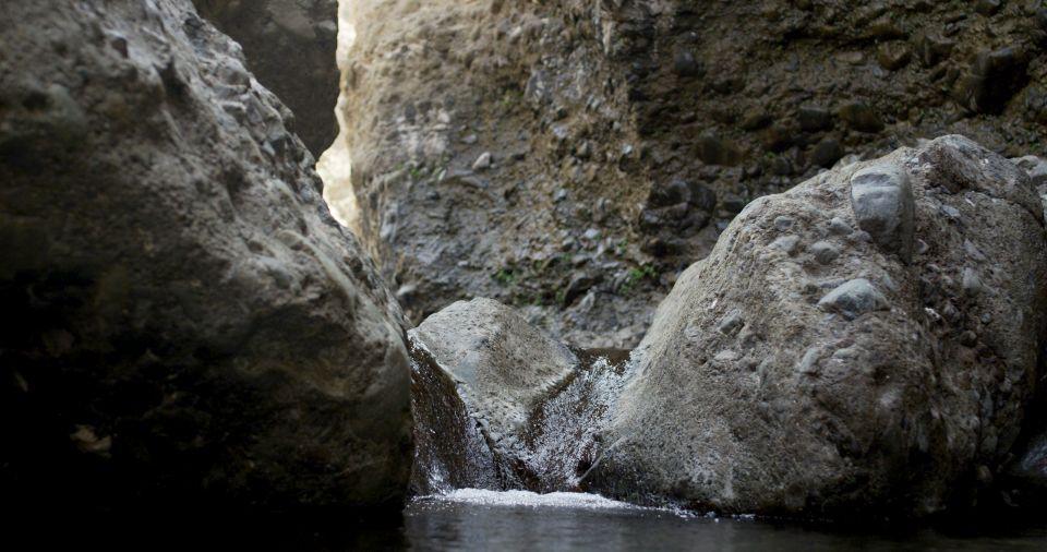 إدراج محمية وادي الوريعة بالفجيرة على قائمة محميات اليونسكو
