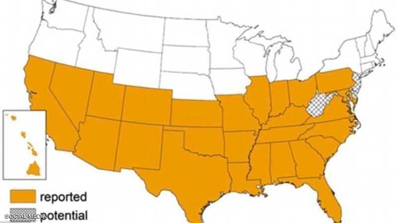 داء مجهول يصيب 300 ألف أميركي.. والأطباء يحذرون الملايين