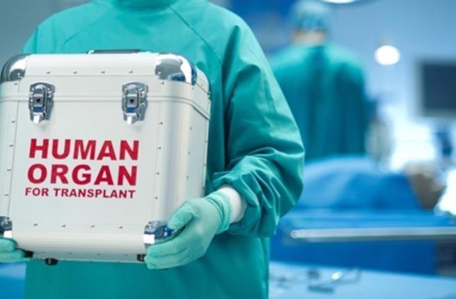 حالة خطيرة: وفاة 3 أشخاص بالسرطان بعد عملية زرع أعضاء من نفس المتبرع