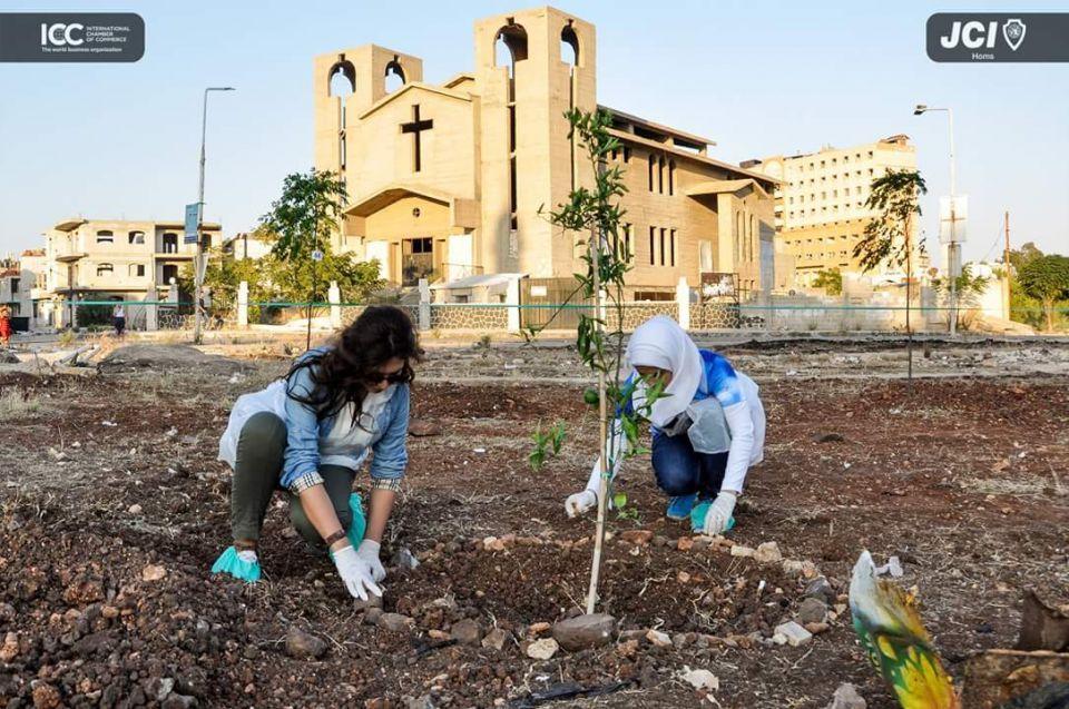 للمرة الثانية.. شباب سوريون ينظمون حملة كلو سجر زيتون لإعادة الحياة لبلادهم المنكوبة