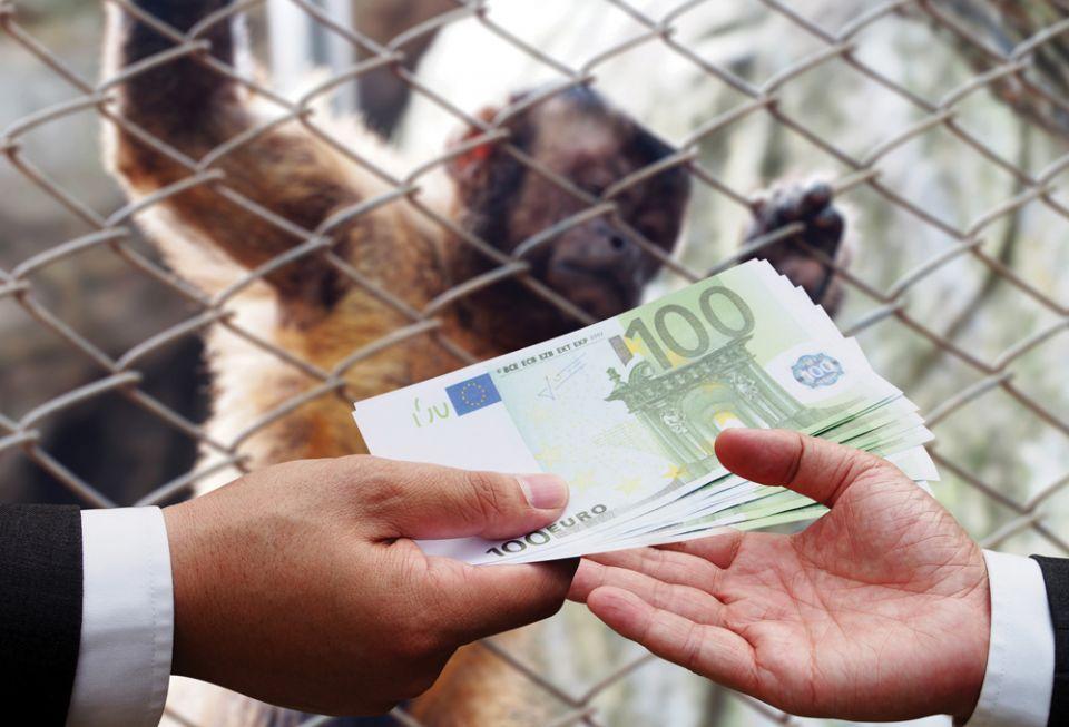 الإمارات في مواجهة الاتجار بالحيوانات البرية