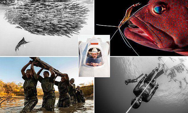 شاهد الصور المرشحة لأهم جائزة تصوير من بين 326 ألف صورة مشاركة بالمسابقة