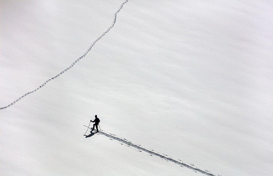 الصور الفائزة بجوائز التصوير بطائرة مسيرة
