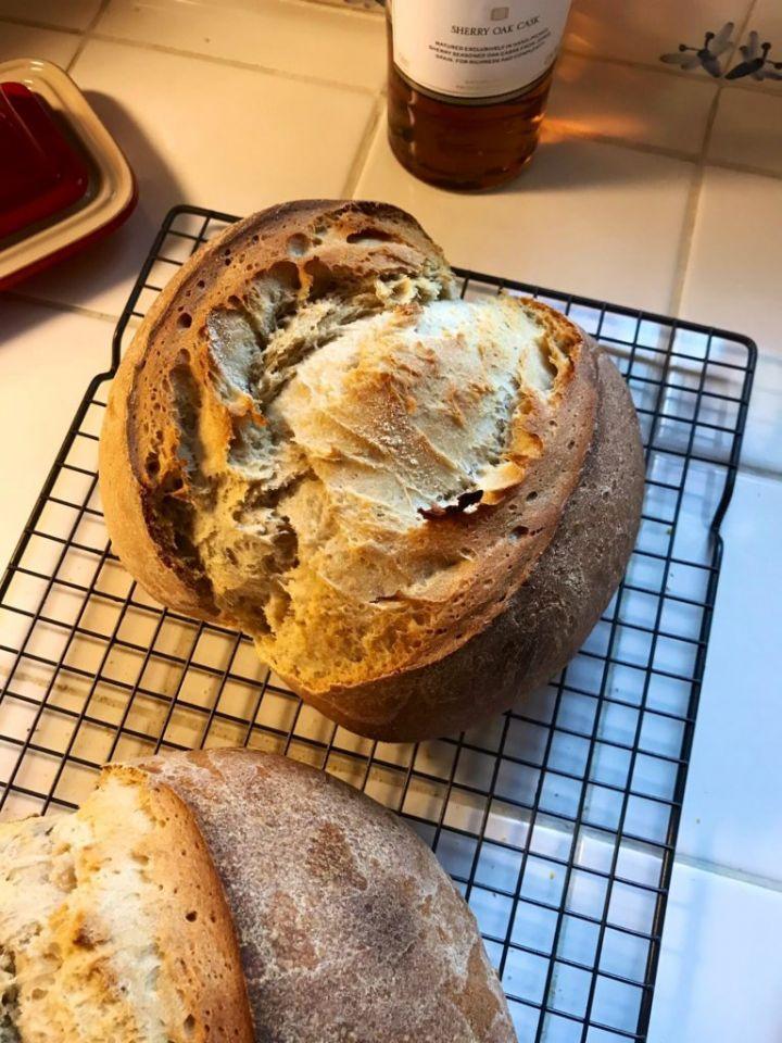 أمريكي يستخدم خميرة مصرية عمرها 5200 سنة لإنتاج خبز أفضل من الحالي