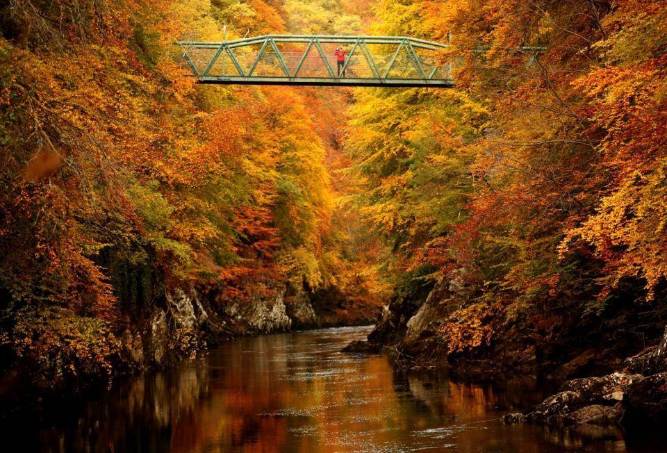 20 صورة مذهلة تظهر جمال الخريف في المملكة المتحدة
