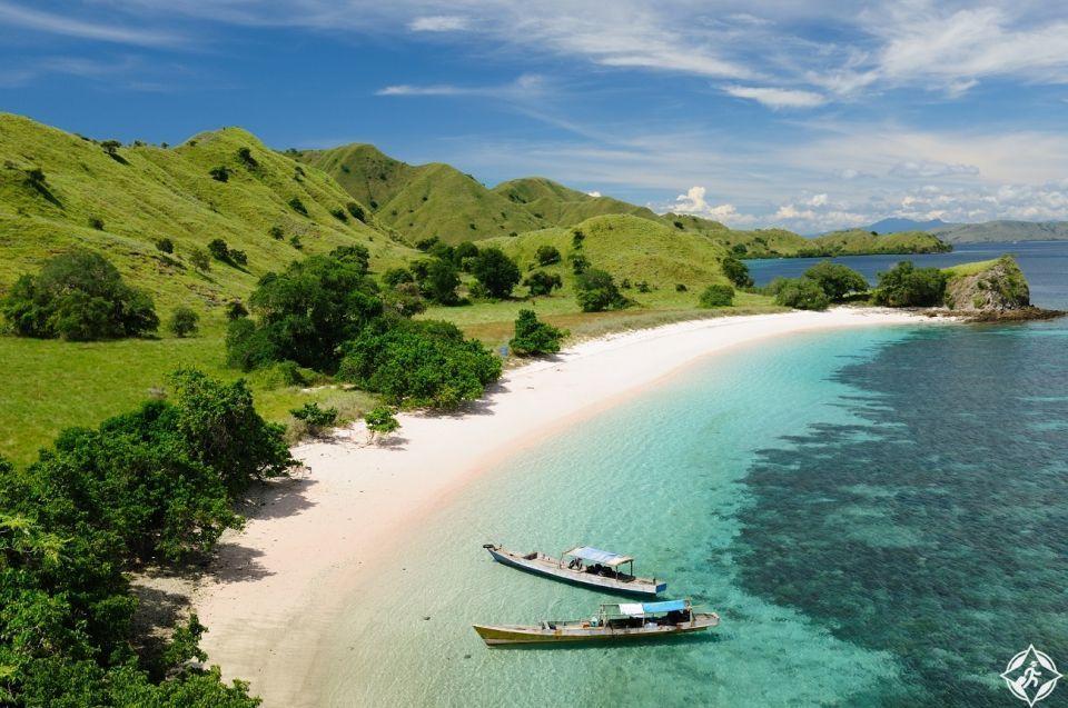 بالصور : 1000 دولار لزيارة جزيرة كومودو الإندونيسية بدءًا من العام المقبل