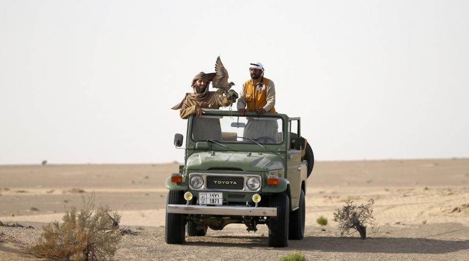 أبوظبي: محمية المرزوم تفتح موسمها أمام الصقارين وهواة الصيد والسائحين