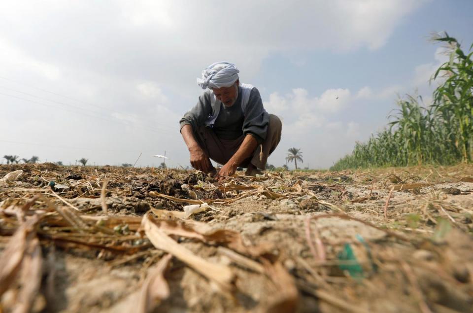بدون خسارة مياه متوقعة بسد إثيوبي، جفاف أراضي زراعية في مصر في أولى بوادر أزمة المياه