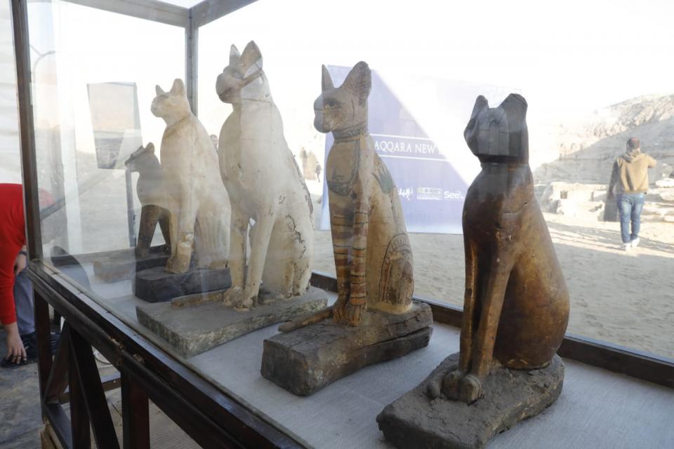 بالصور.. مصر تكشف عن مومياوات أسود وتماسيح وقطط وطيور