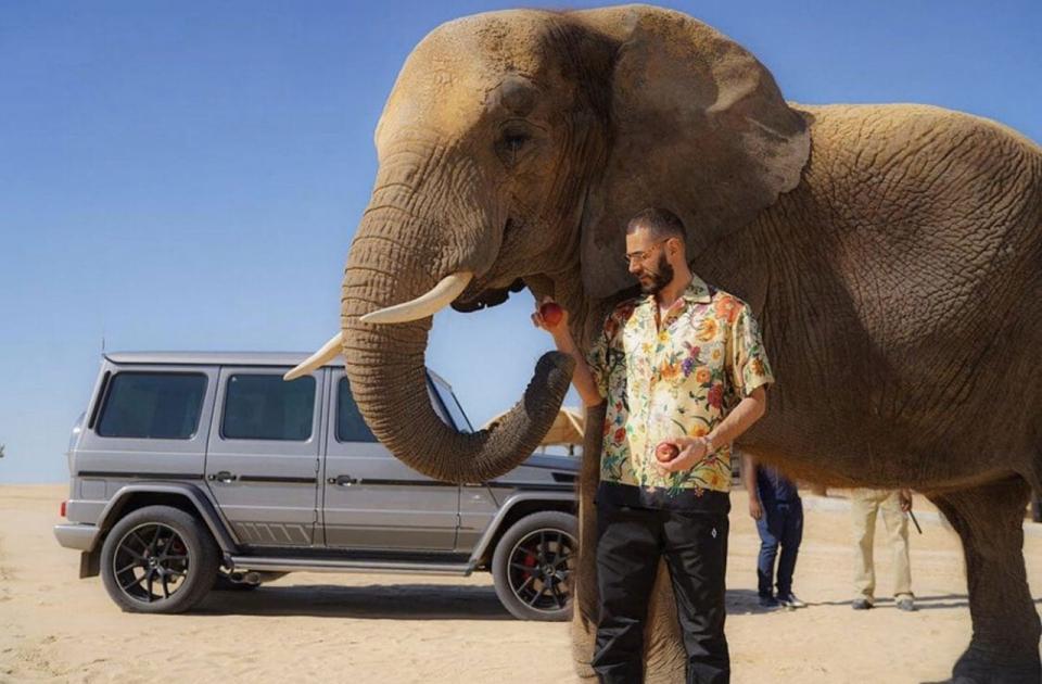 بالفيديو.. كريم بنزيمة يستعرض مهارته مع فيل في دبي
