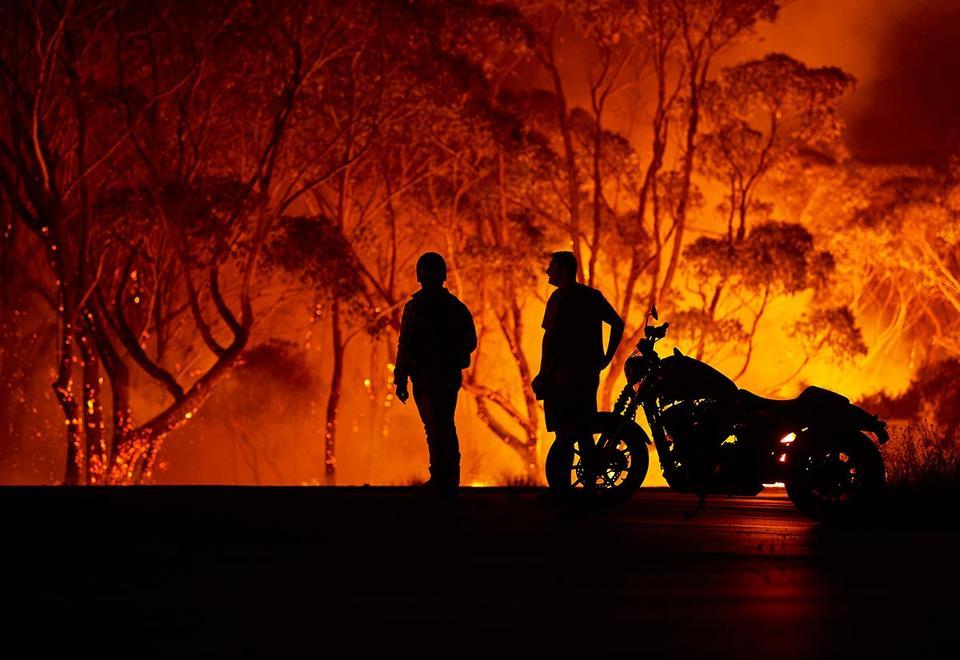 «تعاضد الأصدقاء» مبادرة الإمارات تضامناً مع المتضررين من الحرائق في استراليا