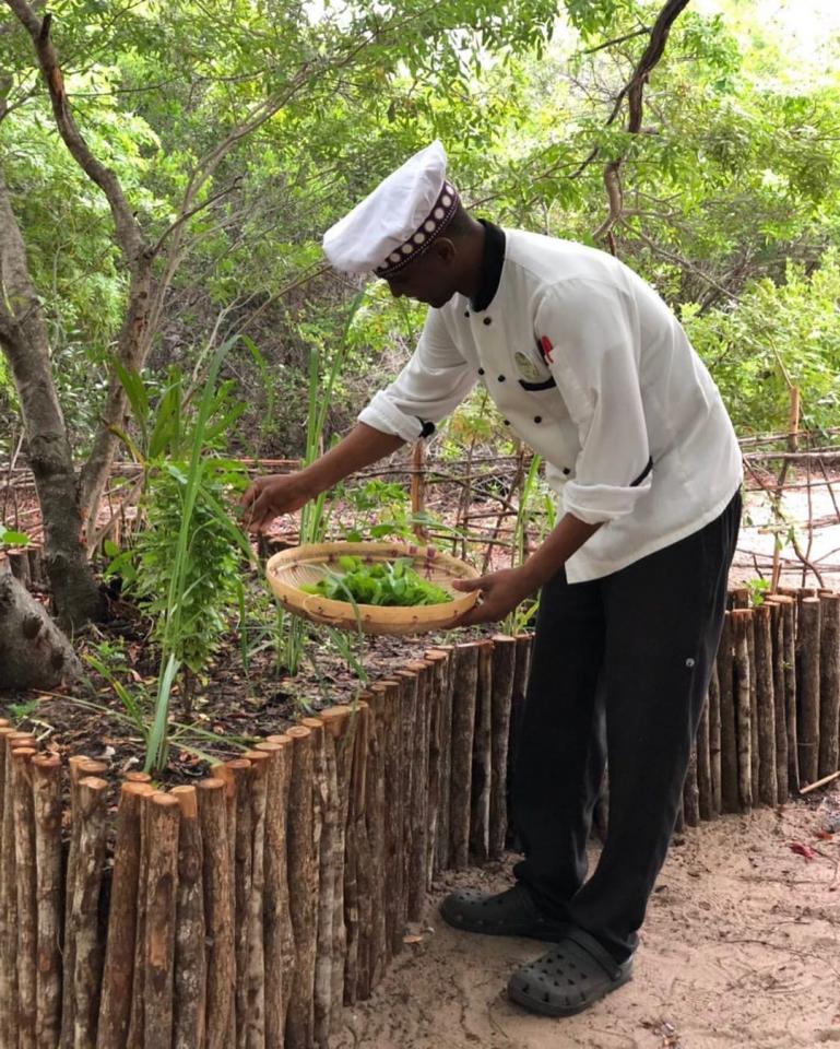بالصور : موزمبيق تستضيف أول منتجع مطبوع تلاثيا في العالم