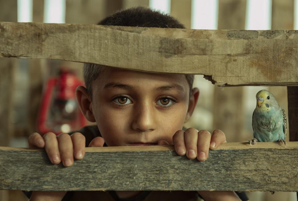 العراق يحصد جائزة الأسبوع الثالث من مسابقة إكسبوجر العالمية صور من المنزل