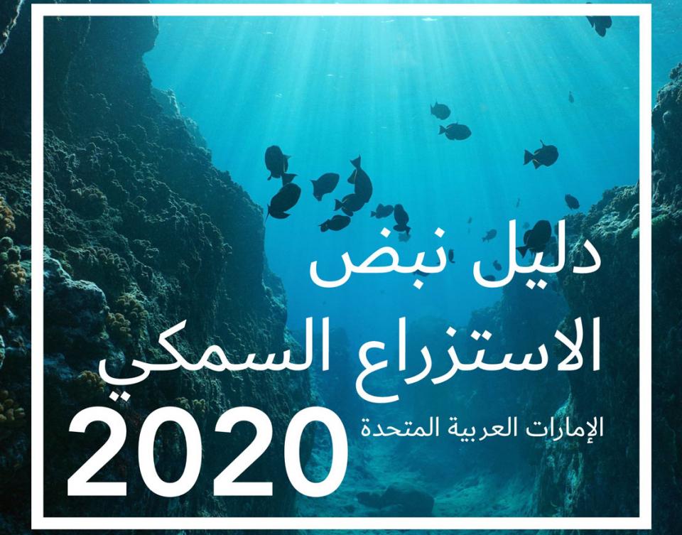 الإمارات تطلق دليل نبض الاستزراع السمكي 2020