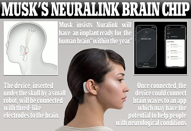 شاهد كشف إيلون ماسك عن شريحة تزرع بالدماغ البشري ليتصل بالكمبيوتر