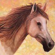 Teena-thawani-arabian-beauty-horse-oil-painting-full-dubai-thumbnail.jpg